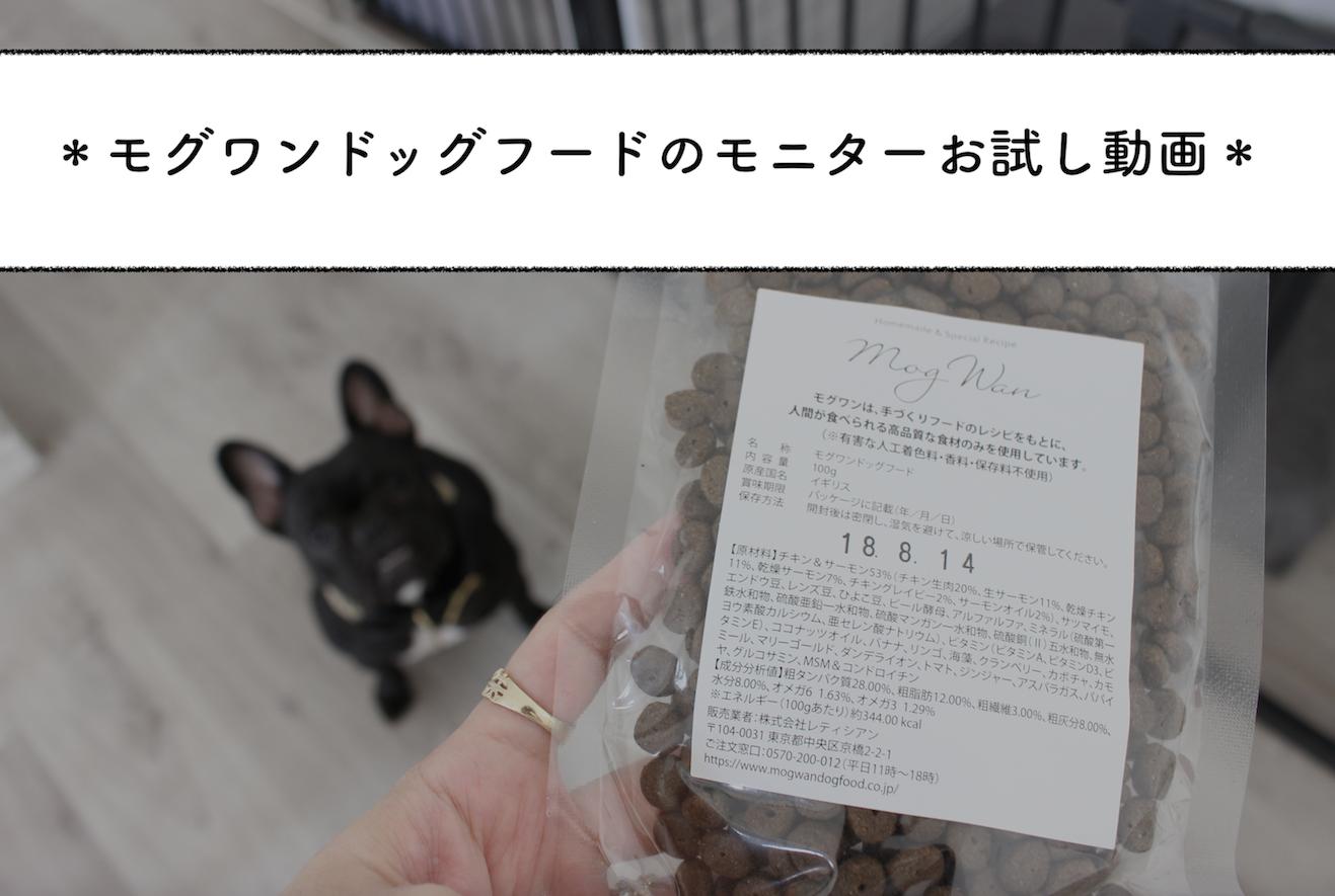 【動画】モグワンドッグフードのモニター感想*グルメなチワワの食いつきが。。!!